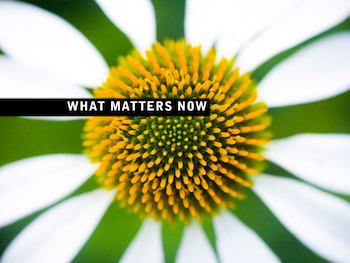 What Matters Now cover